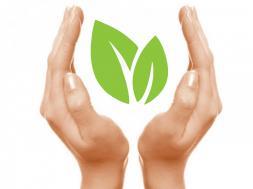 Homeopatia e Sustentabilidade