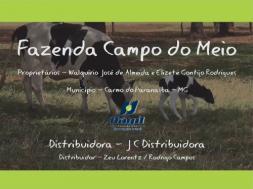 Homeopatia Hágil - Fazenda Campo do Meio - Carmo do Paranaíba / MG
