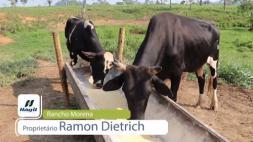 Homeopatia Hágil - Rancho Morena - Jaru/RO